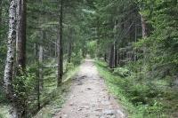 Cesta do La Fouly