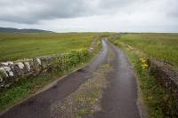 Dingle way jak se patří